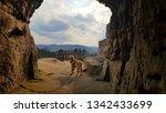 dog enjoys the view im harz   Shutterstock . vector #1342433699