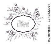 botanical illustration label... | Shutterstock .eps vector #1342522019