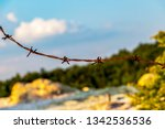 close up of rusty barbed wire...   Shutterstock . vector #1342536536