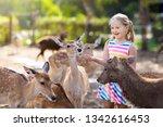 child feeding wild deer at...   Shutterstock . vector #1342616453