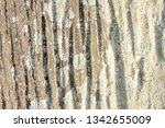 wooden texture in high... | Shutterstock . vector #1342655009