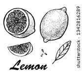 hand drawn illustration of... | Shutterstock . vector #1342816289