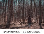 beautiful female in forest... | Shutterstock . vector #1342902503