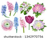 beautiful set of flowers from...   Shutterstock . vector #1342970756