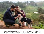 couple in love with a dog in...   Shutterstock . vector #1342972340