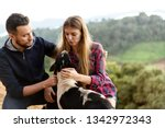 couple in love with a dog in...   Shutterstock . vector #1342972343