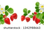 Garden Fresh Sweet Strawberry