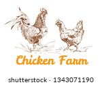 chicken meat and eggs vintage...   Shutterstock .eps vector #1343071190