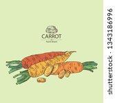 background with carrot  full... | Shutterstock .eps vector #1343186996