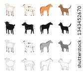 vector illustration of breeding ... | Shutterstock .eps vector #1343452670