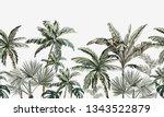hand drawn tropic  vintage... | Shutterstock .eps vector #1343522879