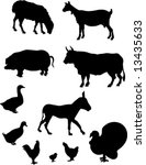 farm animals silhouettes | Shutterstock .eps vector #13435633
