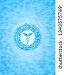 caduceus medical icon inside...   Shutterstock .eps vector #1343575769