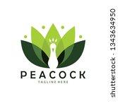 Peacock Logo Icon