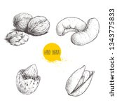hand drawn sketch style nuts... | Shutterstock .eps vector #1343775833