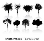 vector set of detailed trees | Shutterstock .eps vector #13438240