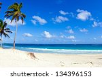 palm trees on tropical beach | Shutterstock . vector #134396153