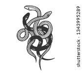 binded snakes sketch engraving...   Shutterstock . vector #1343995289
