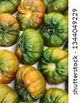 close up of green tomatoes in...