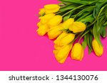 yellow tulips on pink... | Shutterstock . vector #1344130076