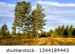 rural field road landscape.... | Shutterstock . vector #1344189443