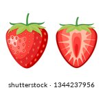 red berry strawberry and a half ... | Shutterstock .eps vector #1344237956