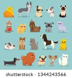 vector illustration set of cute ... | Shutterstock .eps vector #1344243566