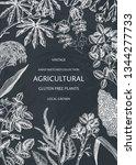 agricultural plants design.... | Shutterstock .eps vector #1344277733