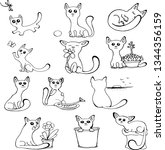 sweet little cats vector... | Shutterstock .eps vector #1344356159