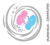 it's twins  multiple pregnancy. ... | Shutterstock . vector #1344441950
