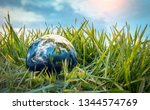 earth globe on the grass. save... | Shutterstock . vector #1344574769