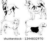 vector drawings sketches...   Shutterstock .eps vector #1344832970