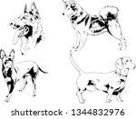 vector drawings sketches...   Shutterstock .eps vector #1344832976