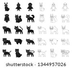 toy animals black outline icons ... | Shutterstock .eps vector #1344957026
