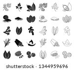 herb and spices black outline... | Shutterstock .eps vector #1344959696