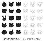 muzzles of animals black... | Shutterstock .eps vector #1344962780