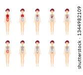 main 12 human female body organ ... | Shutterstock .eps vector #1344982109