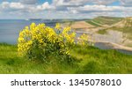 view from the south west coast... | Shutterstock . vector #1345078010