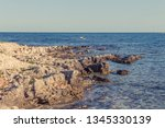 wild stony beach. blue sea  | Shutterstock . vector #1345330139