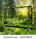 forest life shows on the tv... | Shutterstock . vector #134539829