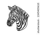 zebra isolated on white. vector ... | Shutterstock .eps vector #1345405610