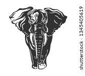 elephant isolated in white.... | Shutterstock .eps vector #1345405619