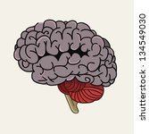 gray human brain | Shutterstock .eps vector #134549030