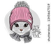 Stock vector pretty gray cat with pink knitted hat and knitted scarf hand drawn illustration of dressed kitten 1345667519