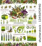 herbs and spice infographic ... | Shutterstock .eps vector #1345693940