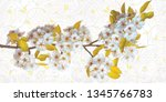 beautiful white flower with... | Shutterstock . vector #1345766783
