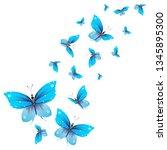 beautiful butterflies  blue...   Shutterstock . vector #1345895300