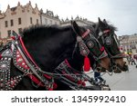 pair of black horses in harness ... | Shutterstock . vector #1345992410