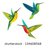 animal,bird,hummingbird,illustration,nature,stylized,stylized bird,tropical,tropical bird,vector,wild,wild bird,wildlife
