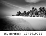 abstract tropical beach...   Shutterstock . vector #1346419796